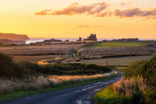 Whitby Abbey From Hawsker Lane (1 of 1)
