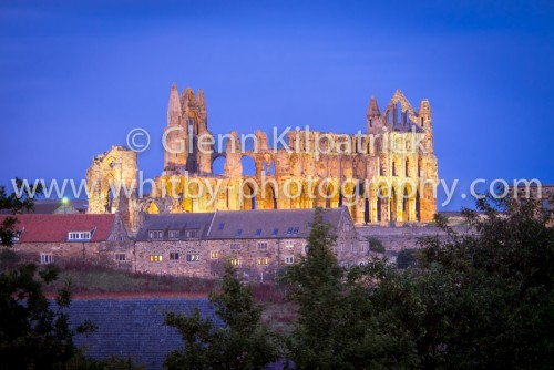 Whitby Abbey From Panett Park Website Copy (1 of 1)-3