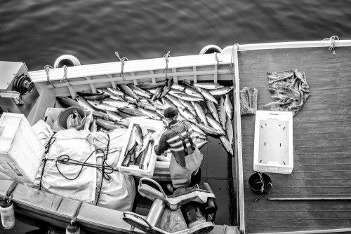 Last of The Whitby Salmon Fisherman
