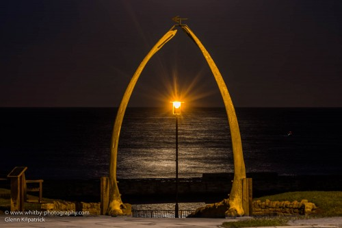 Whitby Whale Bones