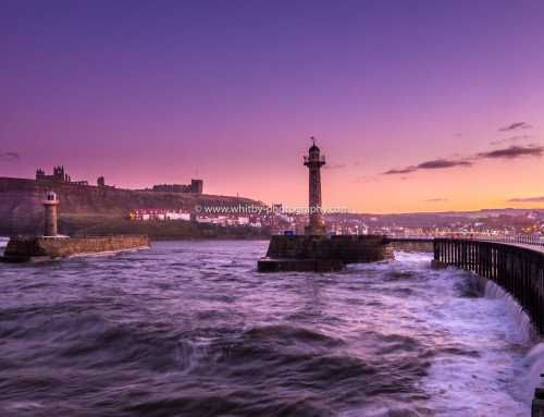 Whitby Photography Customer Feedback From Sarah Mycroft