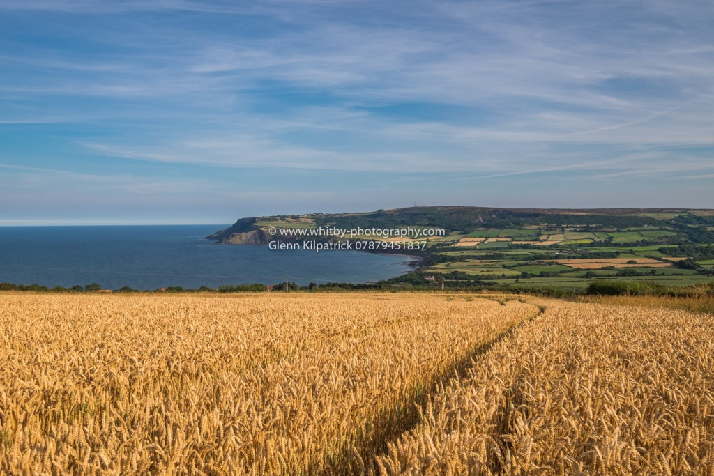 Robin Hoods Bay Through The Fields