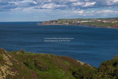 Sandsend Cliffs - A View Of Whitby With Heather In Foreground