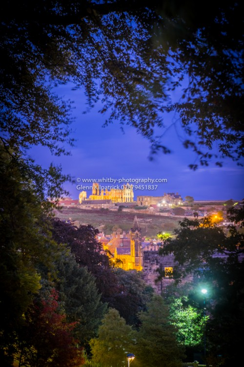 Whitby Abbey From Pannett park