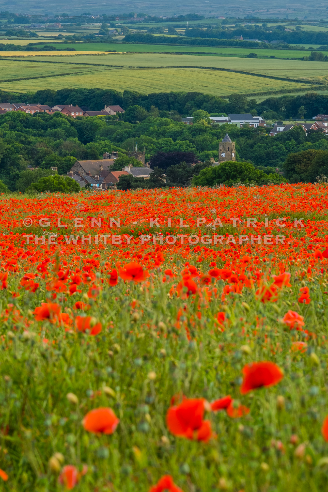 dating in whitby north yorkshire Countryside dating in north yorkshire for rural singles, single farmers, single equestrians and those who enjoy dating country people.