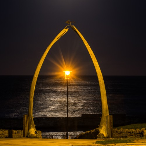 Whitby Whale Bones Moonrise