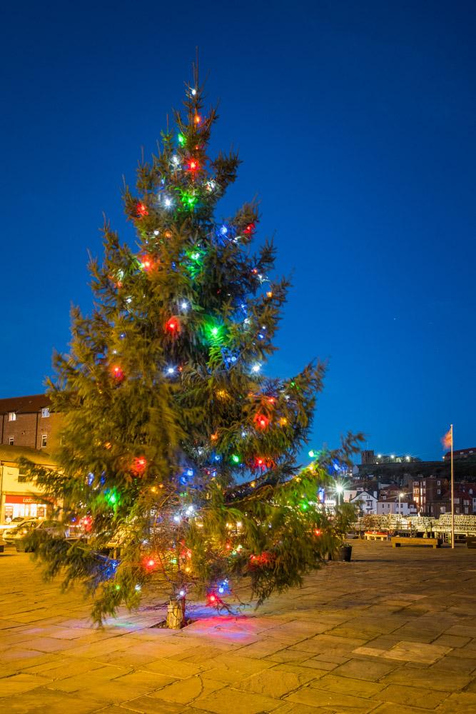 Whitby christmas tree outside the star inn restaurant