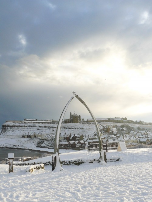Whitby Whale Bones Christmas Cards