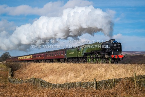Steam Locomotive Tornado 606130 North York Moors Railway