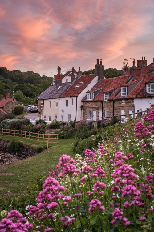 Sandsend Sunset In The Valley, With Beautiful Flowers