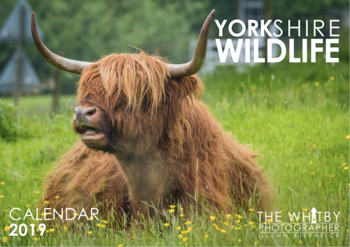 Yorkshire Wildlife Calendar 2019