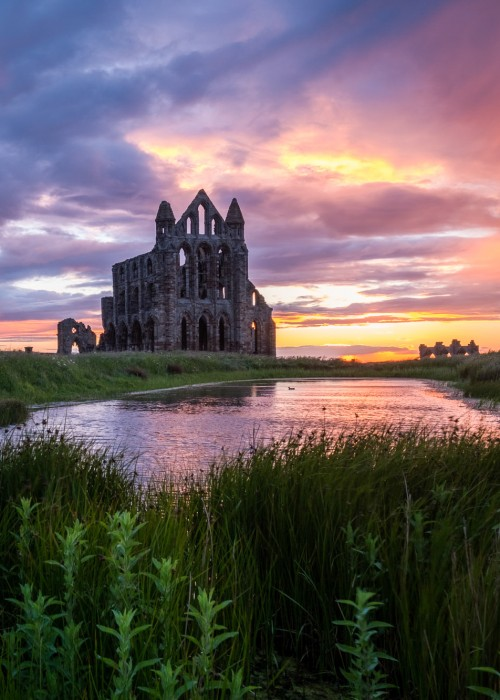 Whitby Phone Cases - Whitby Abbey Phone Case For I Phone Or Samsung Phones.