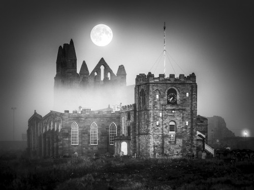 Whitby Abbey Coasters - Misty Moon Rising