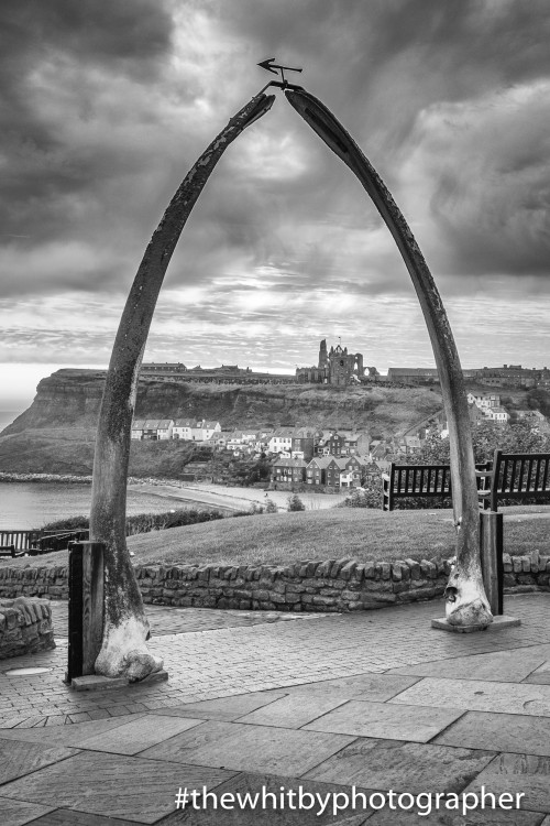 Whitby Whale Bones Black And White Photograph