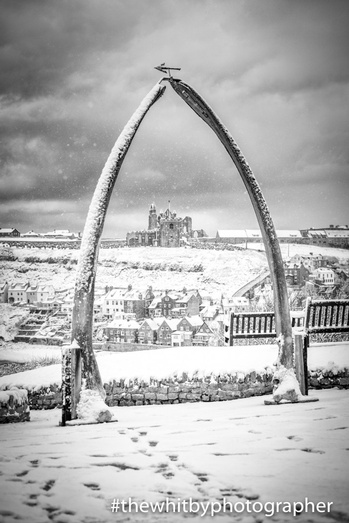 Whitby Whale Bones In The Snow. Black and White