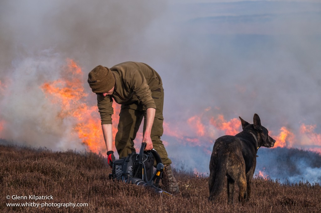 North York Moors Heather Burning