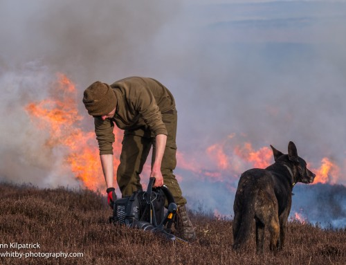 I don't Like Gamekeepers & Heather Burning North York Moors