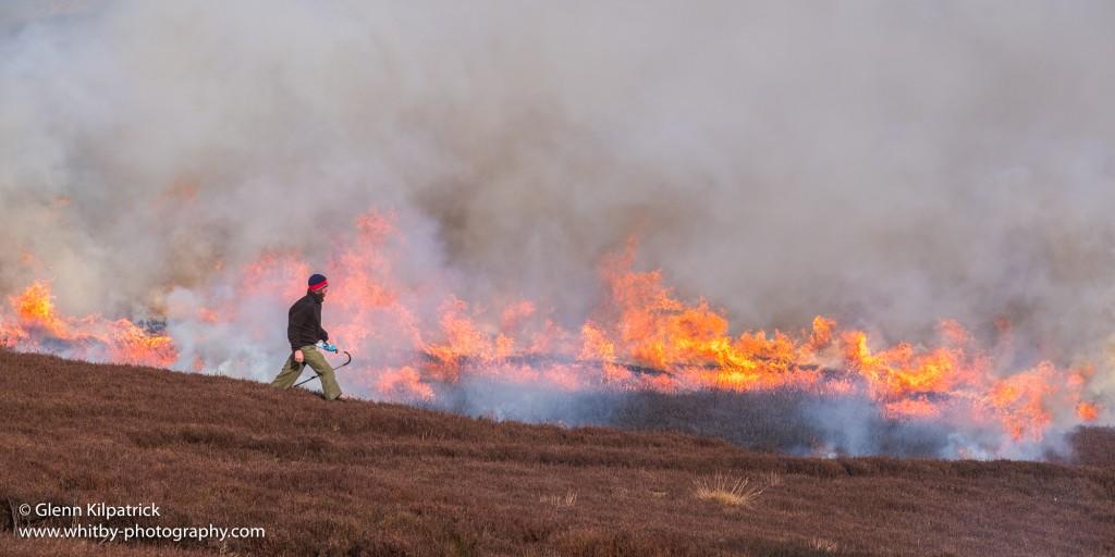 North York Moors Heather Burning