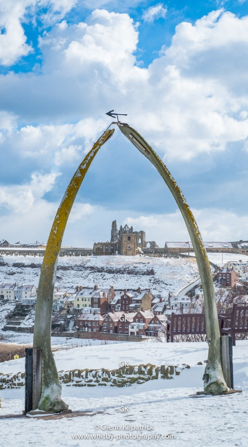 Whalebones at Whitby Phone Case