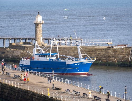 BA 77 Alcedo Parkol New Build Arrives At Whitby