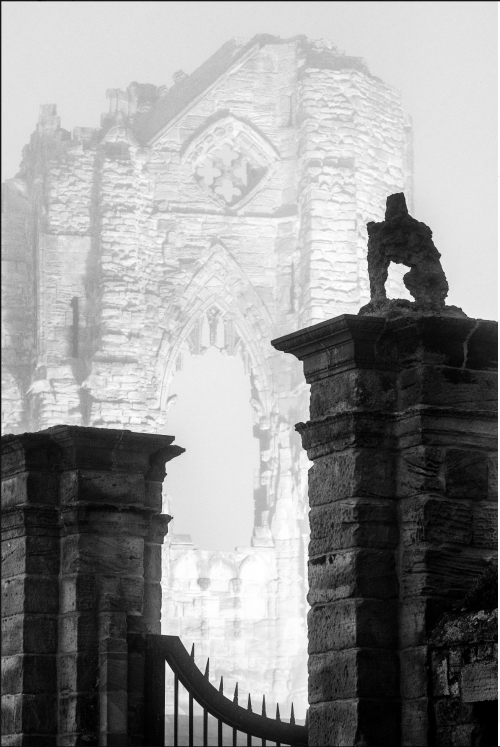 Misty Whitby Abbey At Midnight