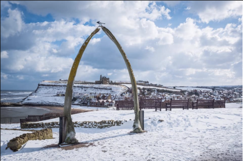 Whitby Whale Bones In The Snow Canvas And prints
